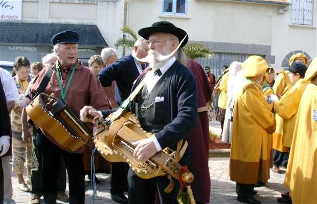 F te de la coquille saint jacques d 39 erquy erquy 1 - Fete de la coquille st jacques port en bessin ...