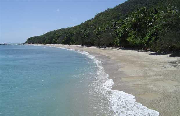 Parque nacional Isla Fitzroy