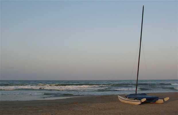 Playa El Saler