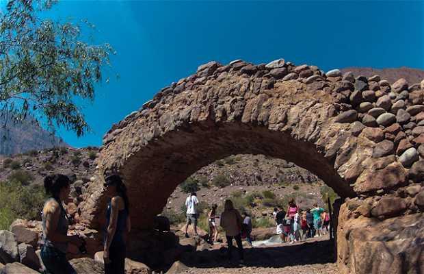 Puente Histórico Picheuta