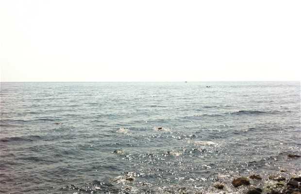 Fiumefreddo di Sicilia