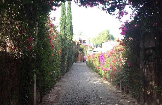 Ville de San Miguel de Allende