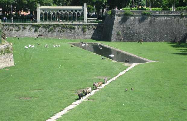Parque de La Taconera