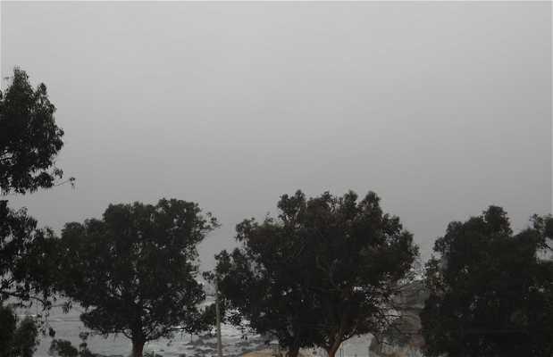 Vista desde el Cementerio Playa Ancha