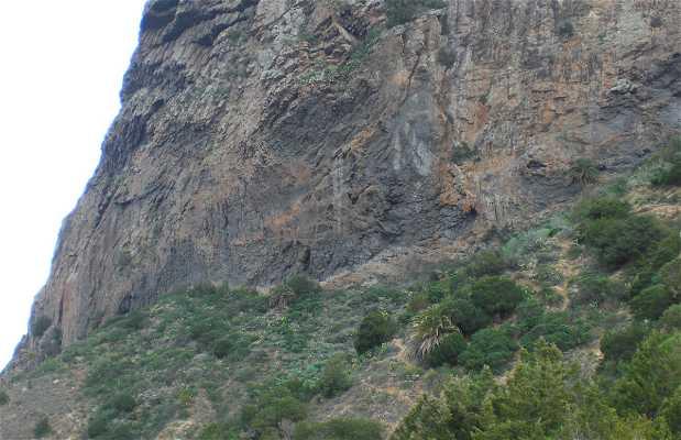 Ascensión a Roque Cano