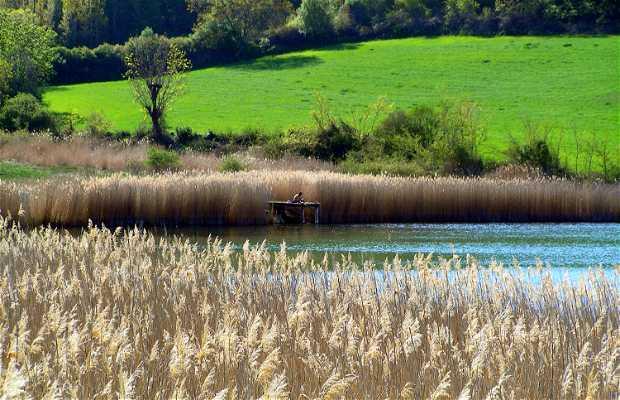 Montcortès Lake