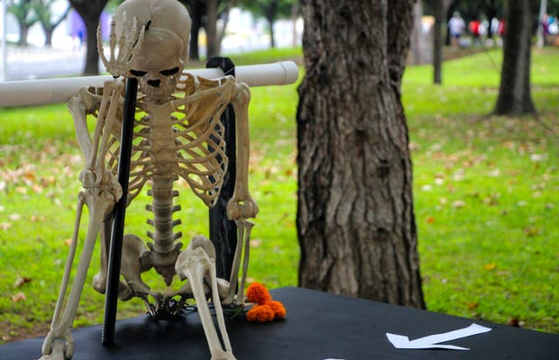 Altar de Muertos: Vida y Muerte