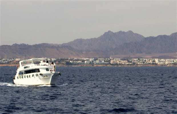 Escursioni all'isola di Tiran