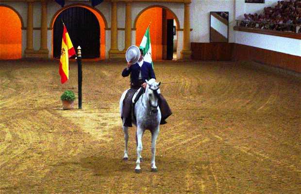 La Real Escuela Andaluza del Arte Ecuestre