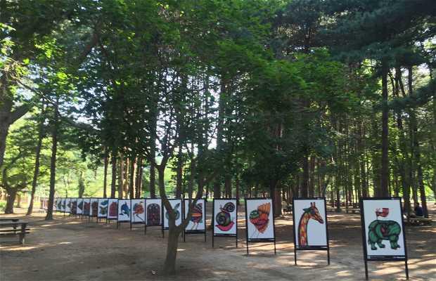Exposición de murales en nami island