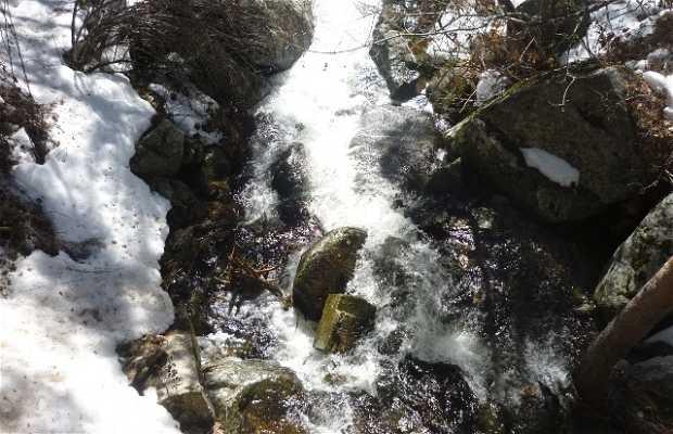 Arroyo de la Laguna