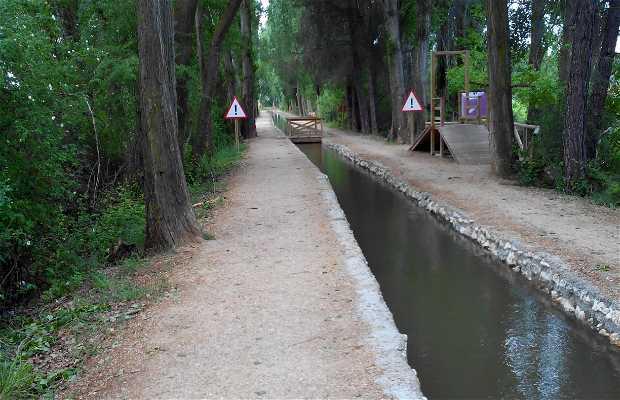 Acequia Laguna de Duero