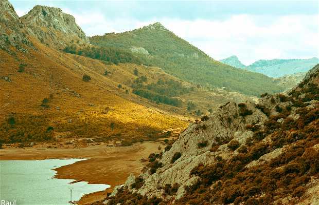 Pla de Cuber y Puig de L'ofre