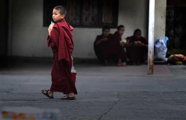Jang Chub Choeling Monastery,Pokhara