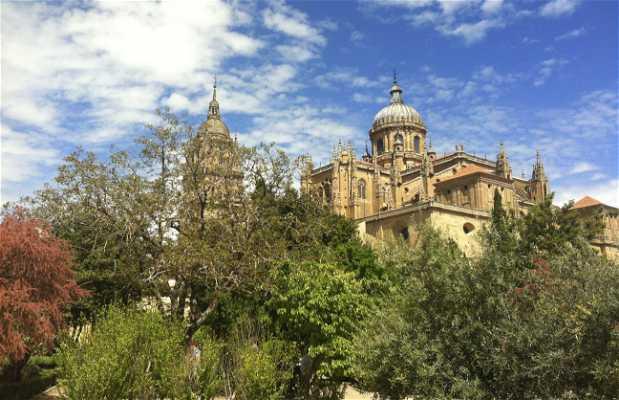 Orto di Calisto e Melibea a Salamanca
