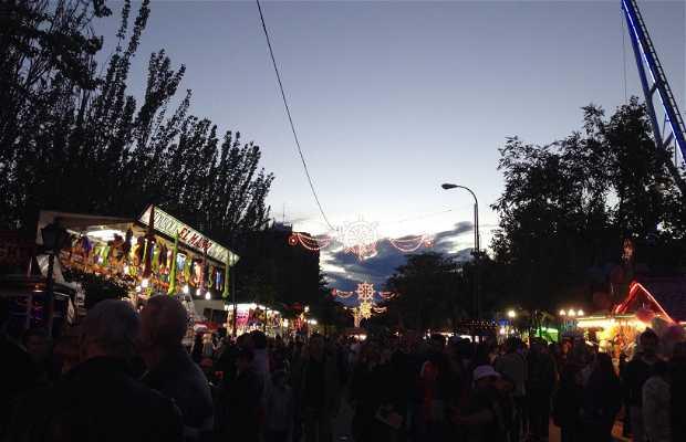 Fiestas barrio del pilar