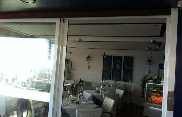 Blue Marlin En Morro Jable