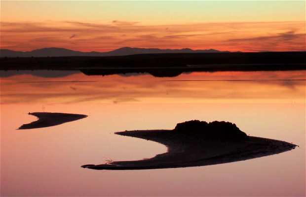 Reserva Natural Laguna de Peñahueca