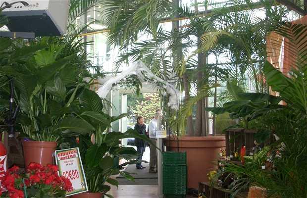 Jardinerie des Ardoisières