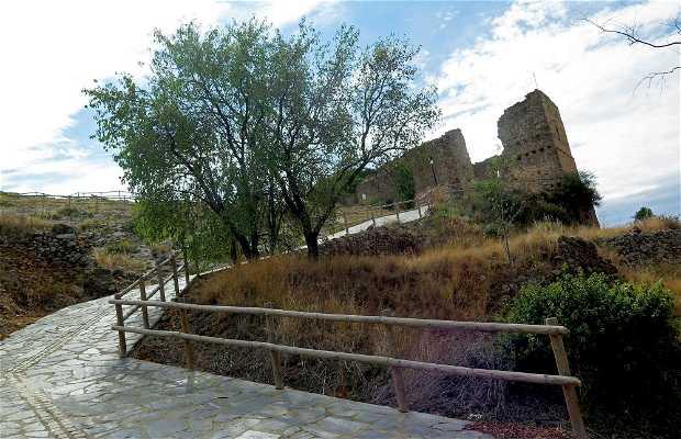 Castillo de Muro de Aguas