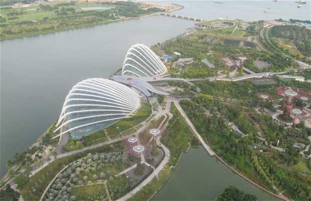 Vistas desde Marina Bay
