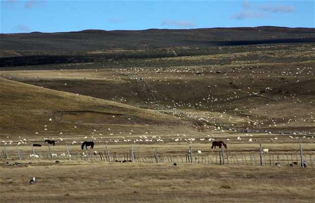 Ruta a Argentina por Tierra del Fuego