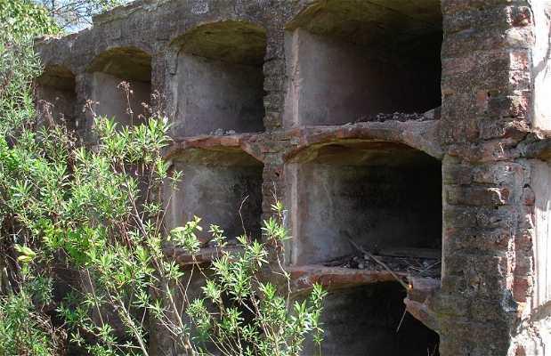 Cementerio Abandonado de San Andrés de Giles