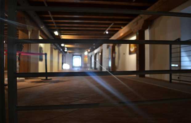 Museo Santa Chiara