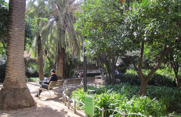 Jardins du Palais Robert