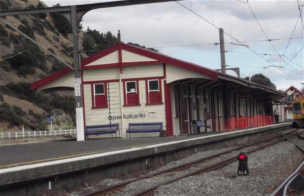 Treno TranzCoastal Wellington-Paraparaumu