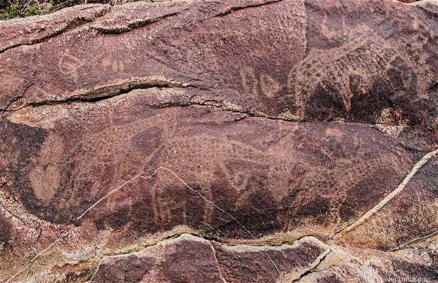 Peet Alberts Rock Engravings
