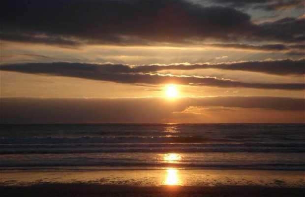 Campo Soto beach