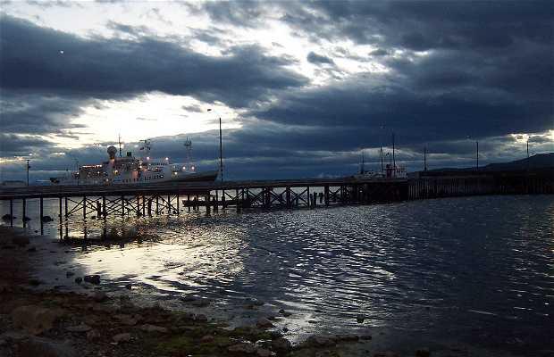 Natales Port