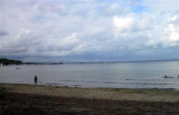 Lago de Biscarrosse