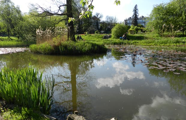 Jardín Bótanico de la Universidad Jagiellonia