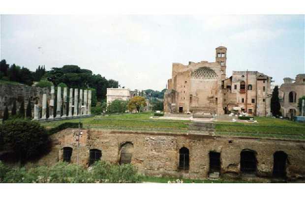Templo de Venus y Roma