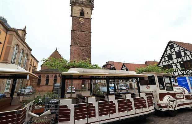 Oficina de turismo y tren turístico