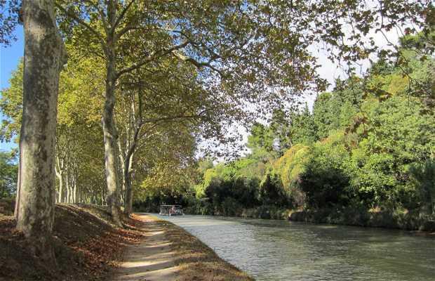 Sendero del Canal du Midi