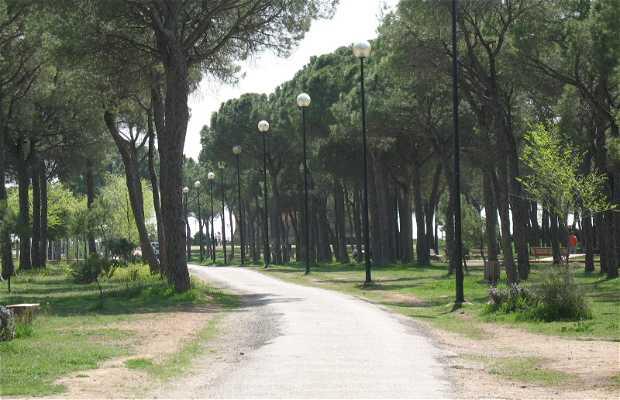 """Parque Periurbano """"LA PULGOSA"""": Relax en la ciudad"""