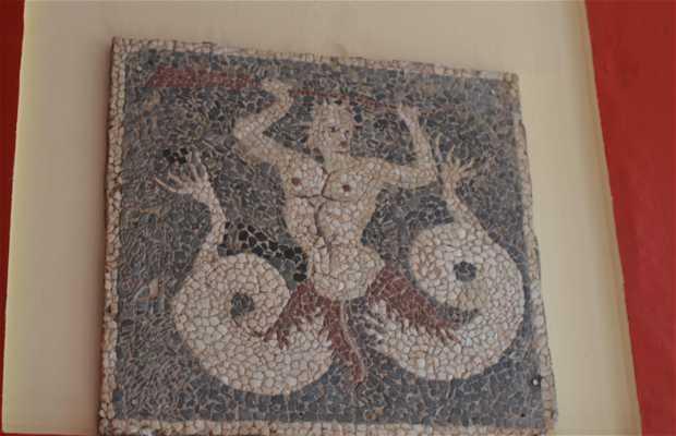 Museo Arqueológico de Esparta