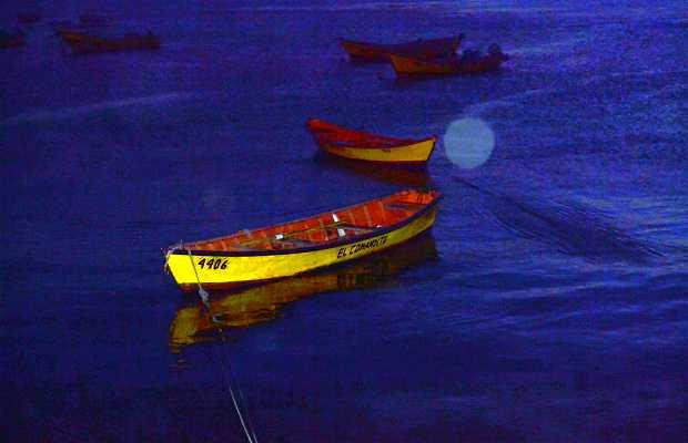 Las canoas de Niebla