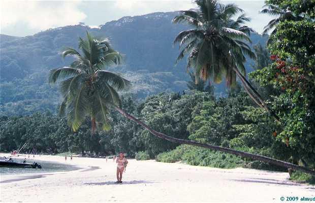 Praia de Beau Vallon - Seychelles