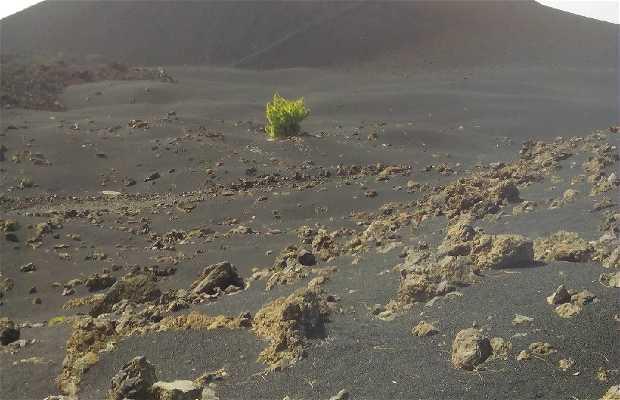 Volcan del Chinyero