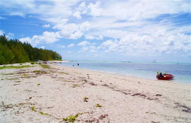 Ilot Mangenie, Mauritius.