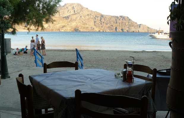Taverna Gorgona
