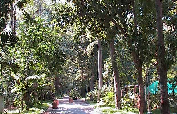 Jardín Botánico de Pondicherry