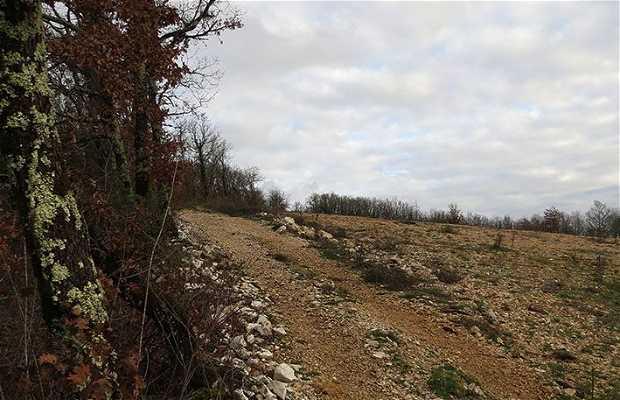 Ancien Site Archéologique du Puy du Fournet