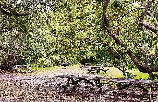 Área de Picnic no Hugh Taylor Birch Park