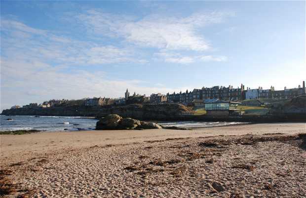 Playas de Saint Andrews
