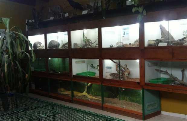 Expoacuario y serpento